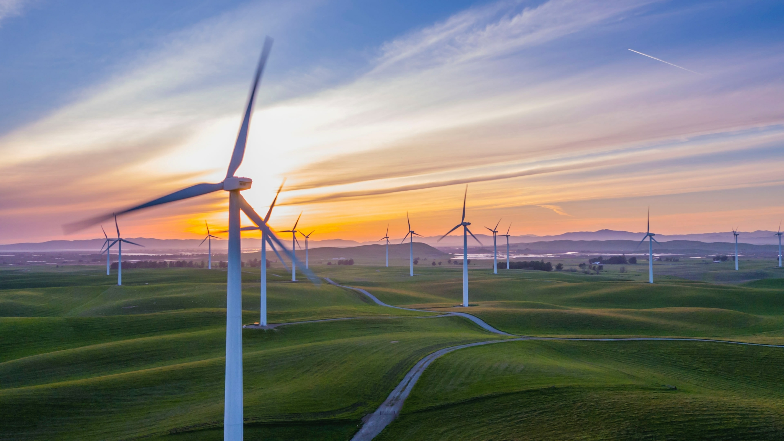 Impact Investing: Target Your Environmental and Social Goals Through Your Investments